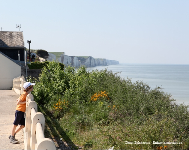 somme, baie, reportage, coups de coeur, mer, nature