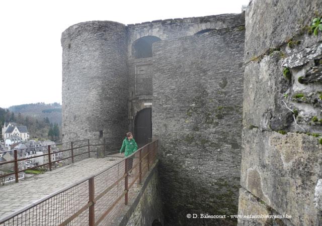 bouillon,château,faucon,rapace,fauconnerie,spectacle,château fort,ardenne,semois