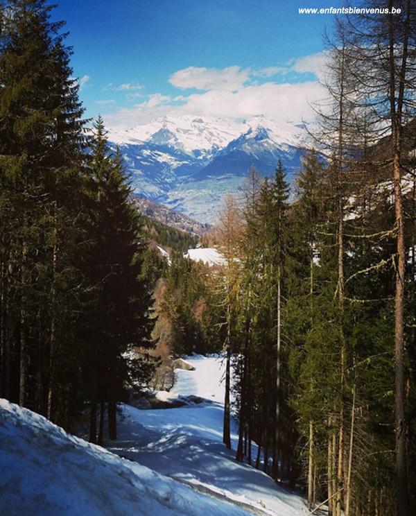ski, nendaz, montagne, sport, sports hiver, ecole ski, valais, mont-fort