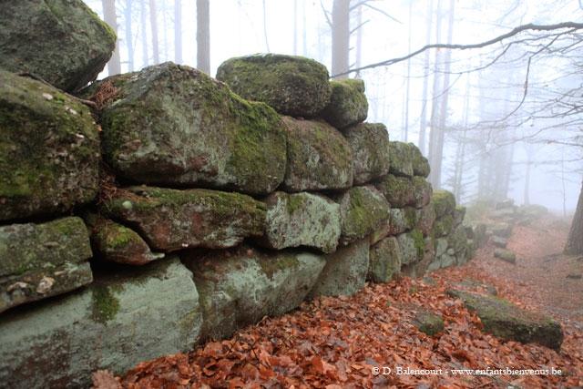 monastère,insolite,alsace,mystère,original,spiritualité,mur paien
